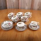 Johnson Brothers Friendly Village The Ice House 10 Saucers 11 Cups 1 Creamer