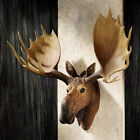 Alaskan Moose Trophy Faux Head Antlers Wall Hand Painted Man Den Hunter Cabin