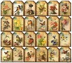 SMALL FLORAL POSTCARDS 24 SCRAPBOOK CARD EMBELLISHMENTS HANG GIFT TAGS