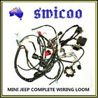125cc 150cc mini jeep hotrod buggy electric start complete wiring loom stator