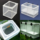 Fish Hatchery Aquarium Fish Tank Breeding Breeder Net Case Hospital Baby Fish