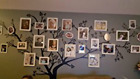 XXL HUGE 8 Foot X 9 Foot Family Tree Wall Decal Home Decor No Reserve Auction