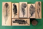Feathers Set of 6 Wood Mounted Rubber Stamps