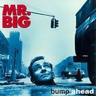 Mr. Big Bump Ahead Japan CD WPCR-80225 Limited Edition 2015 Rock OBI