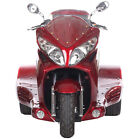 FREE SHIP NEW 300cc Motor Trike Tricycle 3 Wheeler Motorcycle Gas Scooter ZODIAC
