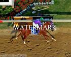 CALIFORNIA CHROME 2014 Preakness Horse Racing 8 x 10 Photo Race