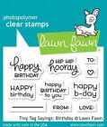 Lawn Fawn TINY TAG SAYINGS BIRTHDAY LF1421 Clear Stamp Set