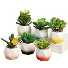 GeLive Ceramic Succulent Planter Plant Bonsai Pot Window Box Micro Landscape