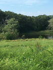 225 Acre Lot in Forbes Lake of the Ozarks