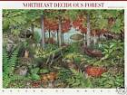 NORTHEAST DECIDUOUS FOREST STAMP SHEET  USA 3899 2005 NATURE OF AMERICA
