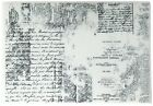 Prima Marketing 814656 Texture Iron Orchid Designs Cling Stamps 5 by 7 Clear