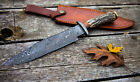 14 INCH CUSTOM HAND MADE DAMASCUS STEEL HUNTING BOWIE KNIFE DEER ANTLER HANDLE