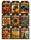 SET OF 9 FALL BLESSINGS SUNFLOWER 08 SCRAPBOOK EMBELLISHMENTS HANG GIFT TAGS