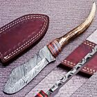 DEER ANTLER HORN CUSTOM HAND FORGED DAMASCUS STEEL HUNTING KNIFE CK 616