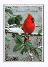 Christmas Greetings James Hautman Holiday Greeting Cards