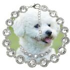 1X Rhinestone Pearl Dog Collars Diamond Pet Cat Dog Party Necklace For Chihuahua