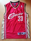 LeBron James #23 Cleveland Cavaliers Authentic Vintage Champion Jersey 44 Old