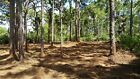 SELLER FINANCING 8 Buildable Lots Near Boat Ramp in Gulf Cove Florida