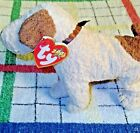 Rufus Beanie Babies Collection