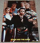 ADAM ANT & THE ANTS Group Pose Poster 1981 Pro Arts 14-070 Desperate Serious