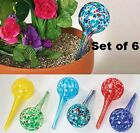 6 colorful Glass 6 Globe ball Vacation hanging Plant water aqua Watering Stake
