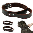 Solid Leather Big Dog Collar with Handle for Large Pitbull German Shepherd US