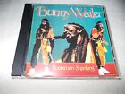 CD - Bunny Wailer Livingston ( Rootsman Skanking )