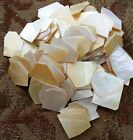 GOLD WHITE Mother of Pearl 040 mop FLAT INLAY BLANKSshell 1 lb