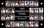 Minnesota Twins Collecting and Fan Guide 15