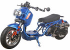 ICE BEAR NEW MADDOG 49cc FULL SIZE Motor Bike Gas Scooter Moped 100Street Legal