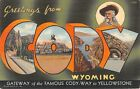 Cody Wyoming WY Greetings From Yellowstone Buffalo Bill Large Letter Linen PC