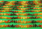 Wholesale Of 20 Baltic Amber Baby Necklaces Rainbow Color 1220 1340 inches