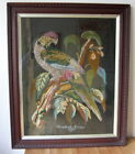 Antique Framed Needlepoint PARROT Wool Work Embroidery Victorian signed1880