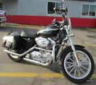 2003 Harley Davidson Sportster 2003 Harley Davidson Sportster XLH 883 Anniversary Edition ONLY 1207 Miles CLEAN
