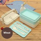 USA Kids Students Lunch Box Food Storage Container Cartoon Shool Bento Box NEW
