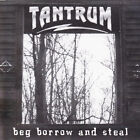 TANTRUM ''Beg Borrow and Steal '' CD 1998 USA RARE Indie Heavy Metal/ Hard Rock