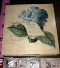 Blue hydrangea thank you for understanding B28 all night mediarubber stamp