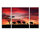 Canvas Print Painting Picture Home Decor Wall Art Elephant Animals Red Landscape