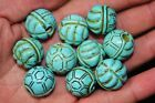 10 PCS CHINESE TURQUOISE HAND CARVED TORTOISE BEAUTIFUL BEADS