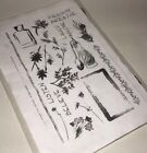 Club Scrap Aromatherapy Clear Unmounted Stamp Set May 2003