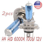 H1 H7 H4 H11 55w 100w Xenon White 6000k Halogen Bulbs Blue Car Head Lamp Globes