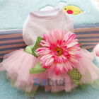 Cute Sunflower Tulle Tutu Skirt Pet Small Dog Puppy Cat Sweet Vest Dress Clothes