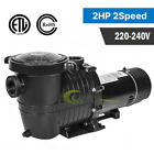 15HP Above Ground Swimming Pool Pump Motor Outdoor 5400GPH 3450RPM W Strainer