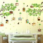 Novelty Large Family Tree Photo Frame Wall Sticker Home Room Decal DIY Decors