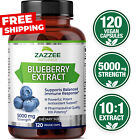 Blueberry Extract Whole Fruit 5000 mg Strength 120 Veggie Capsules 10:1 Extract