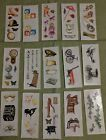 Creative Memories Sticker Pack Of 15 Strips Themed Vintage