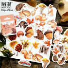 Decor Stationary Diary Label Paper Sticker Fall Squirrel Stickers Scrapbooking