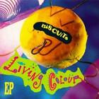 Biscuits by Living Colour