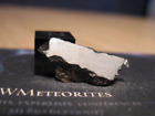 Meteorite NWA 11106 Iron IAB MG Octahedrite with low Re Ir W and Pt values
