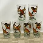 Red Pheasant High Ball Cocktail Glasses